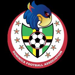 サッカードミニカ国女子代表エンブレム