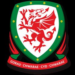 サッカーウェールズ女子代表エンブレム