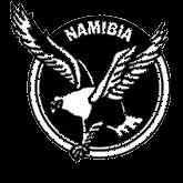 サッカーナミビア女子代表エンブレム